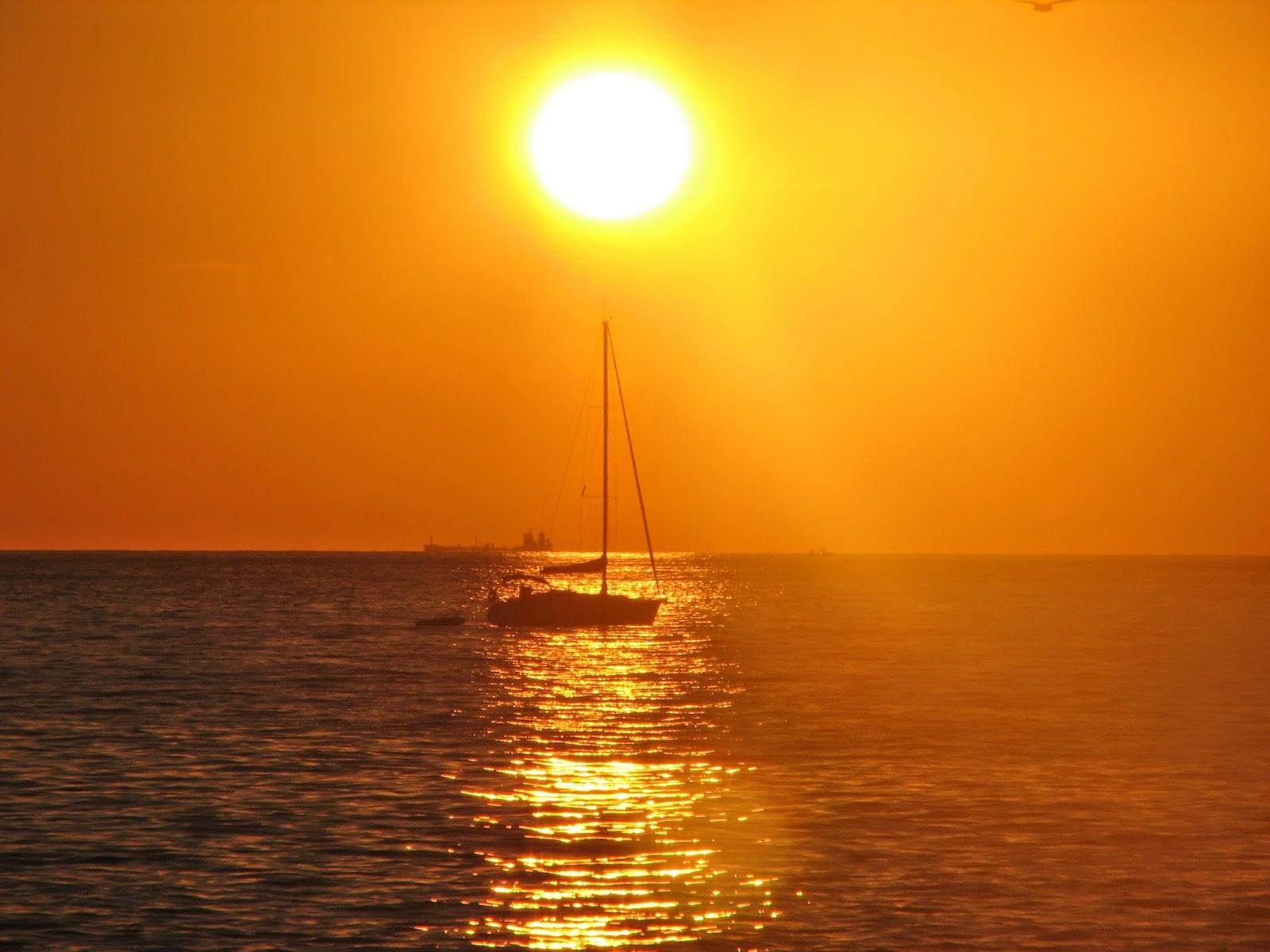 صور مذهلة ورائعة للشمس