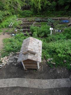 Chicken coop and garden at Arlington Acres Nigerian Dwarf Goat Farm