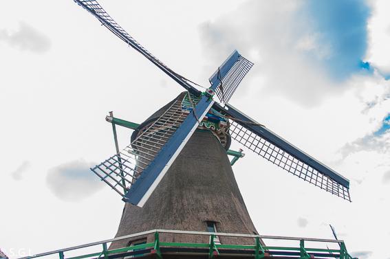 Molino en Zaanse Schans. Excursion desde Amsterdam: Volendam, Marken y los molinos