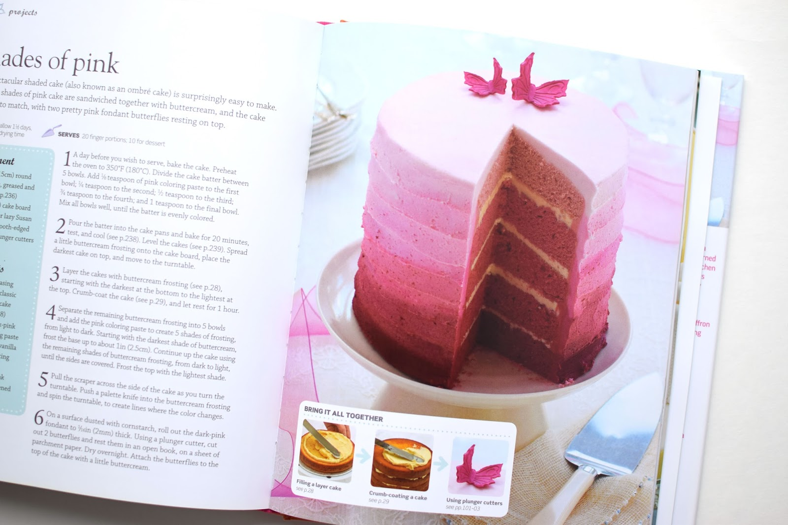 Woman in Real Life: Step-by-Step Cake Decorating (Book Review)