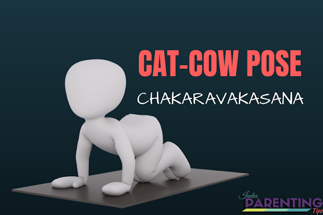 cat cow pose,cat pose,yoga poses,cow pose,cat-cow pose,cat cow,yoga cat cow pose,pose,cat cow pose helps,cat cow pose for back,cat cow pose tutorial,cat cow pose tutorials,cat cow pose video tutorials,cat cow pose yoga for beginners,cat pose to cow pose,how to do cat cow pose,cow cat pose tutorial,cat cow exercise,cow pose yoga,cat and cow stretch,round cat pose,cat and cow