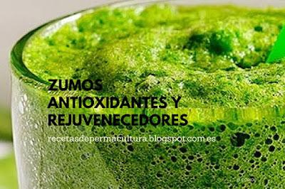 6 Zumos antioxidantes y rejuveneceores en comida sana para resistir el paso del tiempo