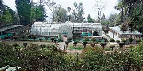 botanical garden in Darjeeling
