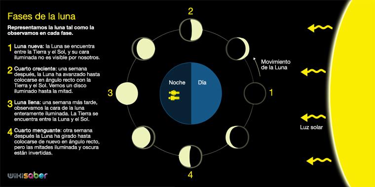 Flotsflotador fases de la luna for Fase lunar julio 2016