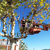 El Ayuntamiento aumenta el parque de maquinaria con una nueva plataforma aérea de trabajo