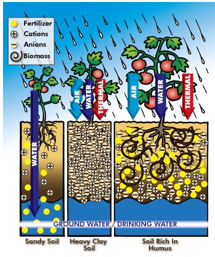 phân hữu cơ vi sinh