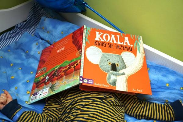 Koala, który się trzymał z Zielonej Sowy i zainteresowany trzylatek