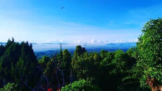 Tempat Wisata di Jember yang Wajib Dikunjungi