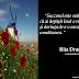 Citate despre succes, perceptie, viata... de Rita Drumes