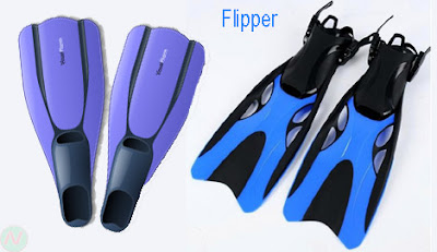 flipper, flipper shoes