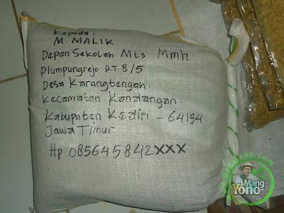M. MALIK Kediri Jatim Pembeli Benih Padi TRISAKTI 75 HST Panen  sebanyak 10 Kg atau 2 Bungkus
