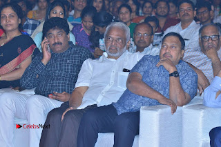 Om Namo Venkatesaya Telugu Movie Audio Launch Event Stills  0267.JPG