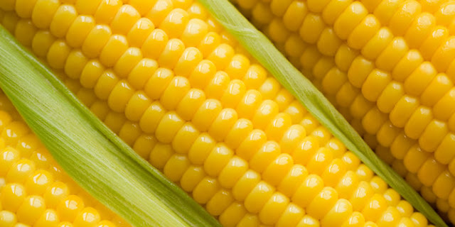 Amazing Health Benefits Of Corn Strands to Cure Many Diseases