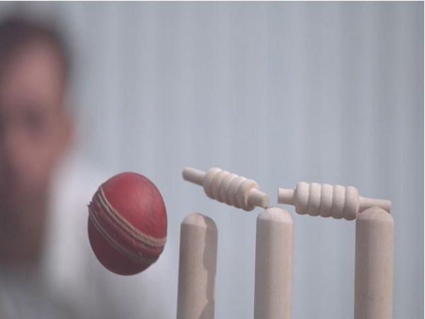 New cricket fixture in cricket reveals involvement in Pakistani cricketers