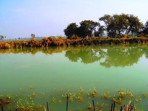 Shekha Lake