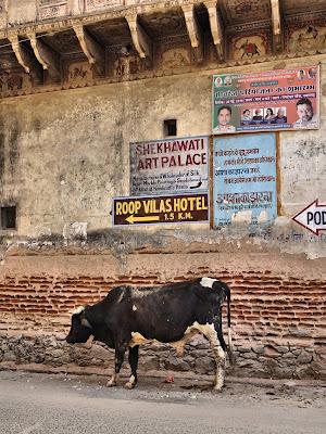 Rajasthan 2017 Retour 224 Mandawa 4 232 Me Partie