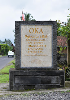 OKA Coffee Plantation
