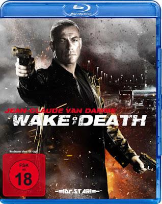 Wake of Death 2004 Dual Audio BRRip 480p 300Mb x264