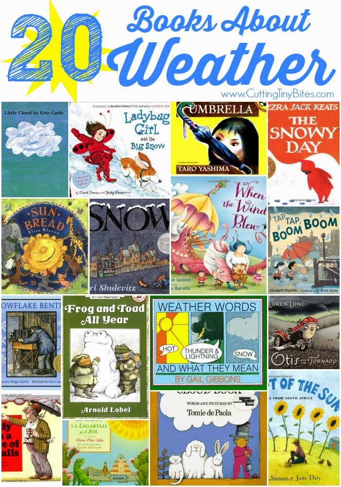 books about the weather for preschool theme