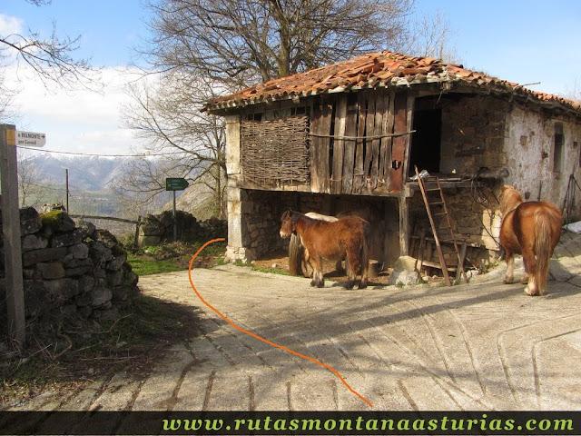 Salida de Dolia hacia Pico Cervera, Belmonte
