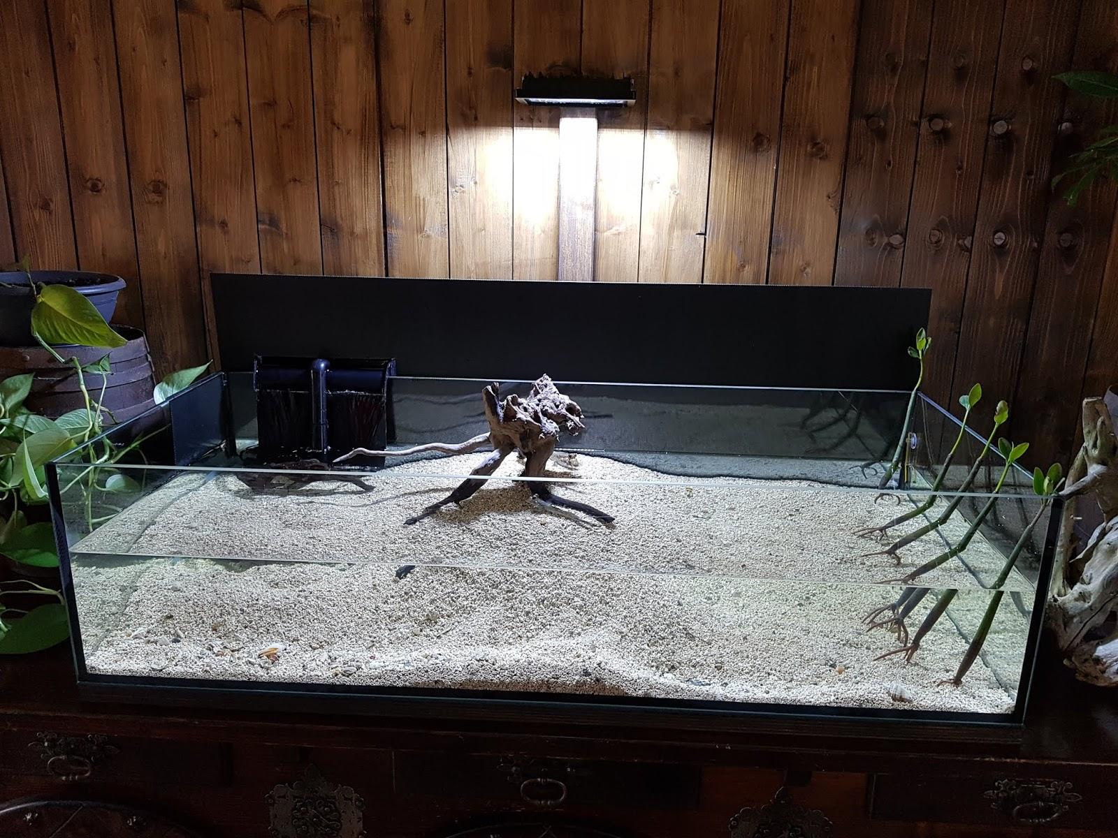 Trouble Peut Rendre Marin Led D'aquarium Lampe L'eau fby7Y6g