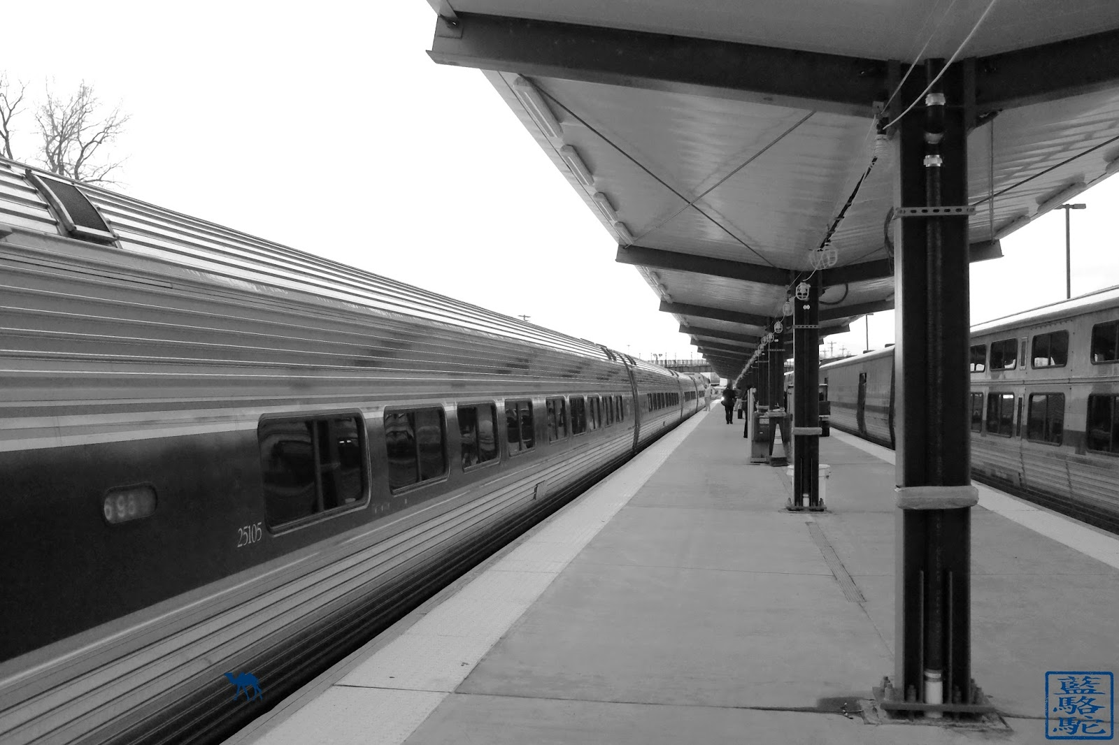 Le Chameau Bleu - Train pour Chicago à Quai depuis New York - Amtrak