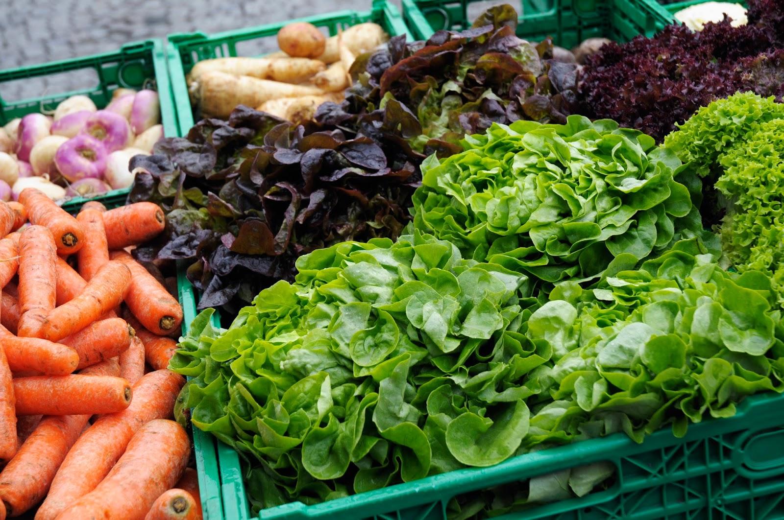 5 Makanan Untuk Meningkatkan Konsentrasi Anak