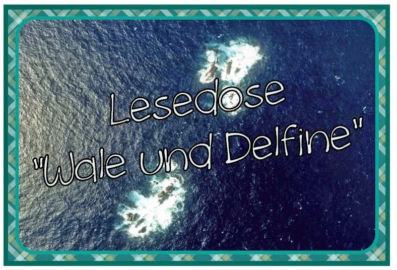 http://www.endlich1pause.blogspot.de/2014/08/lesedosen-ohne-figuren.html