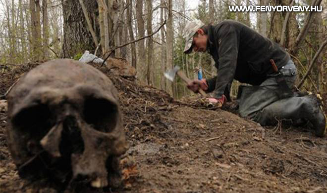 """Oroszország legrejtélyesebb erdeje a Novgorodi """"szellem-völgy"""""""