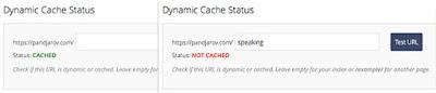 The SuperCacher Plugin for WordPress (SG CachePress) Just Got an Update