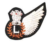 IAF Electronic System Operators (Aircrew) Badge