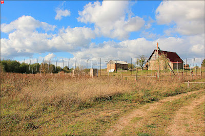 Лютино. Крестьянское хозяйство на месте бывшей усадьбы
