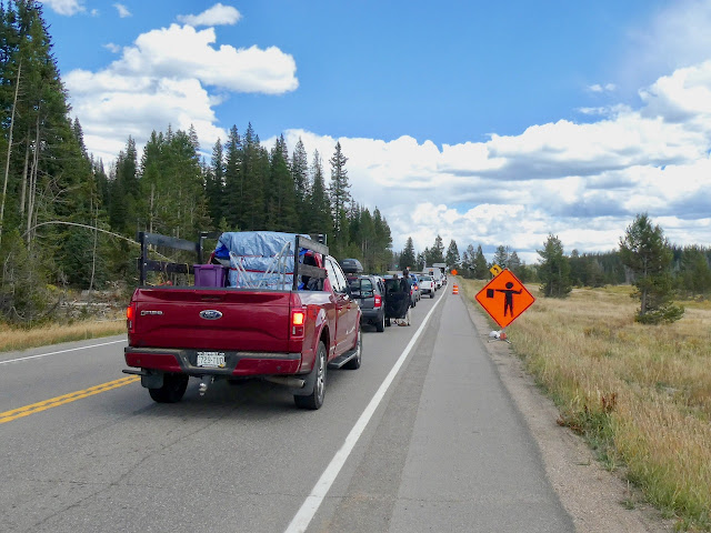 Trucks and cars lined up on the road, road construction sign on the right, forested land on the left