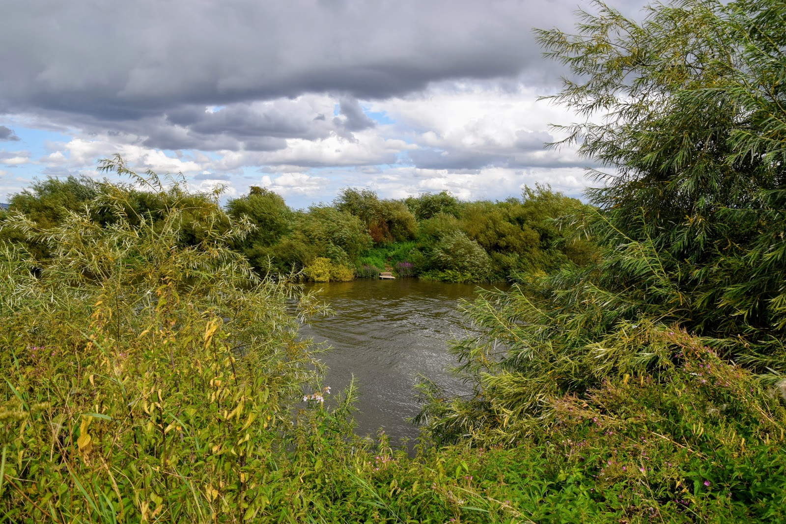 , A Riverside Walk at Lower Lode Inn, Forthampton, Gloucestershire