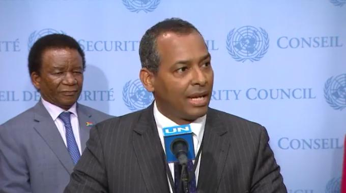 Sáhara Occidental: la designación de un nuevo enviado sobre la mesa en la reunión del Consejo de Seguridad
