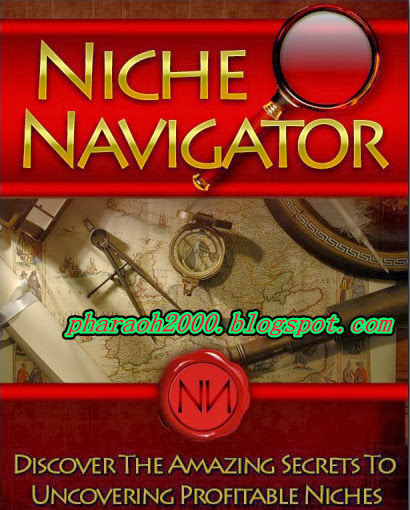 Free download amazing report-Niche navigator