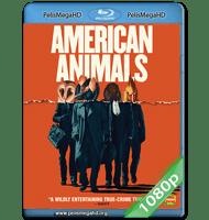 ANIMALES NORTEAMERICANOS (2018) 1080P HD MKV ESPAÑOL LATINO