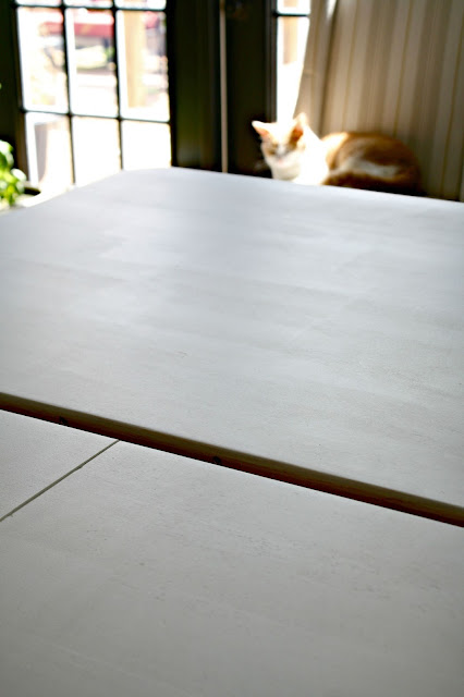 BIN primer on kitchen table