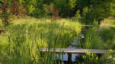 Foto del día. Vida silvestre con los jardines de Jinny Blom