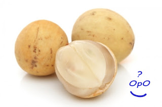 Opo - Manfaat buah duku untuk kesehatan