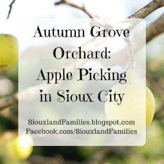 """in background, golden delicious apples hang from tree branches. in foreground, words """"Autumn Grove Apple Orchard: Apple Picking in Sioux City"""""""