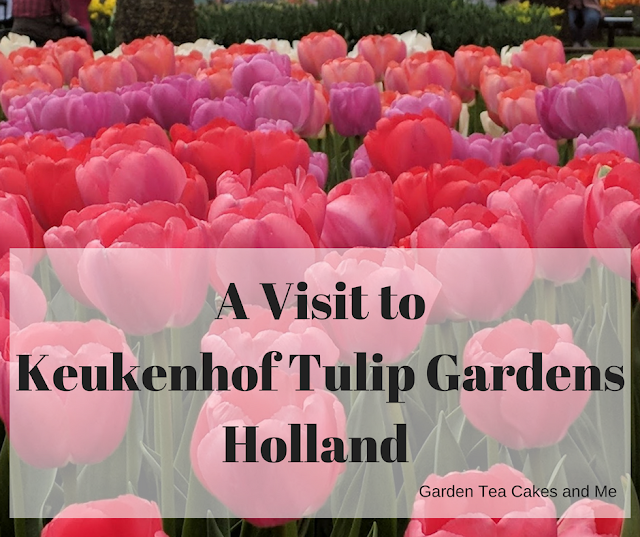 Visit+Guide+Keukenhof+Tulip+Gardens+Amsterdam