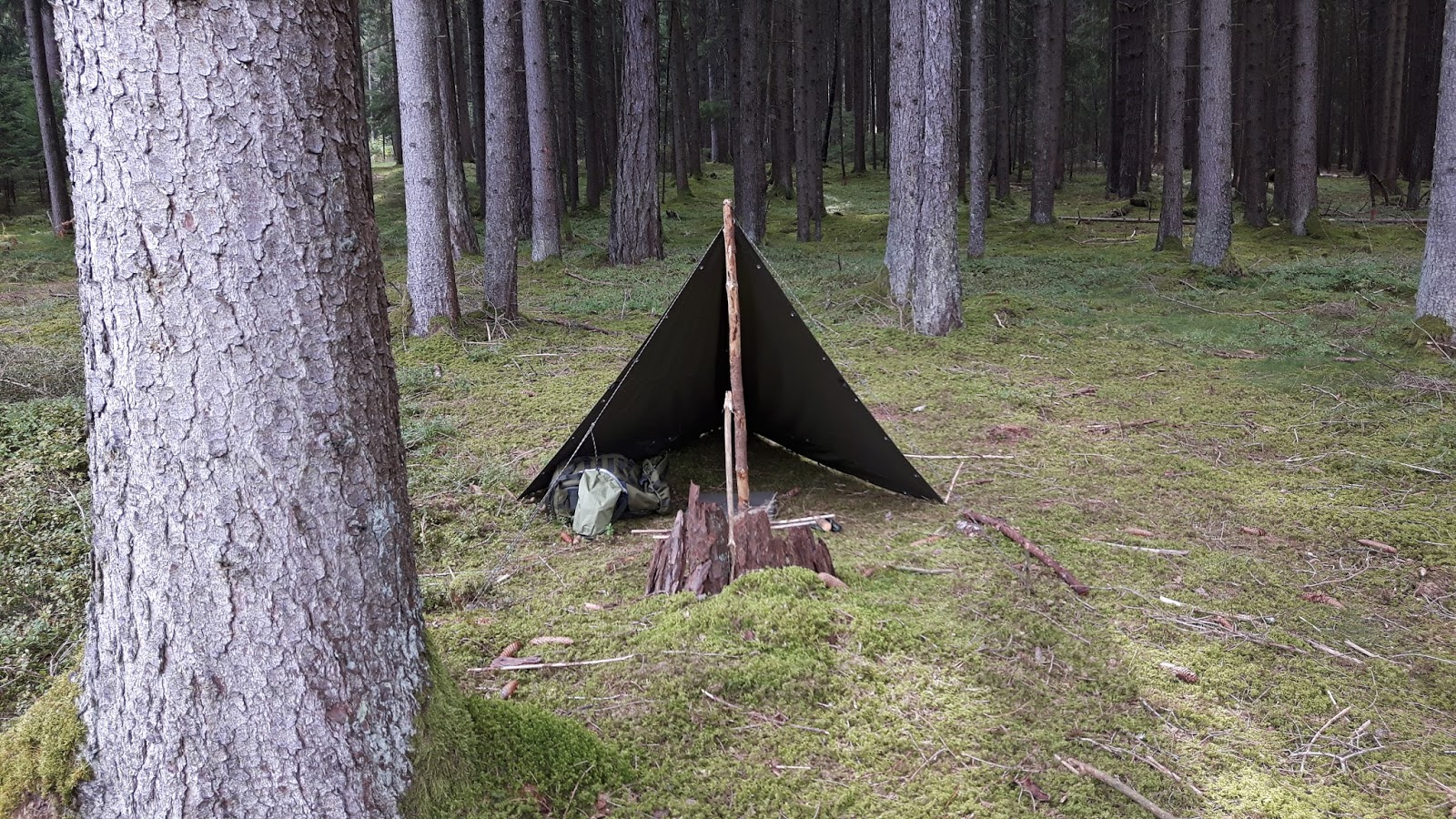 Survival Skills And Thoughts On Outdoor Gear And Knives