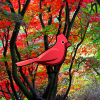 Games2rule Red Autumn Forest Escape Walkthrough