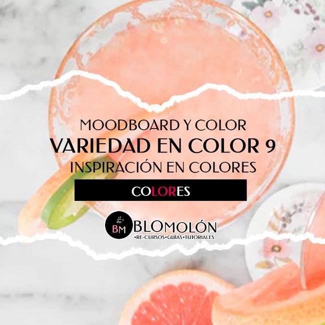 variedad_en_color_9_moodboard