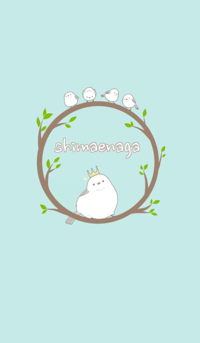 Shimaenaga Long-tailed little bird