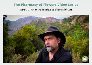 https://wisdom.floracopeia.com/david-crow-healing-powers-essential-oils-aromatherapy-v1iwv/