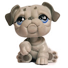 Littlest Pet Shop Bulldog Generation 2 Pets Pets