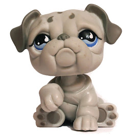 Littlest Pet Shop Pet Pairs Bulldog (#508) Pet