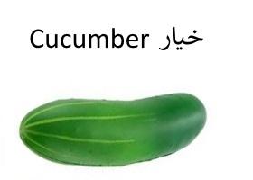 الخيار : Cucumber